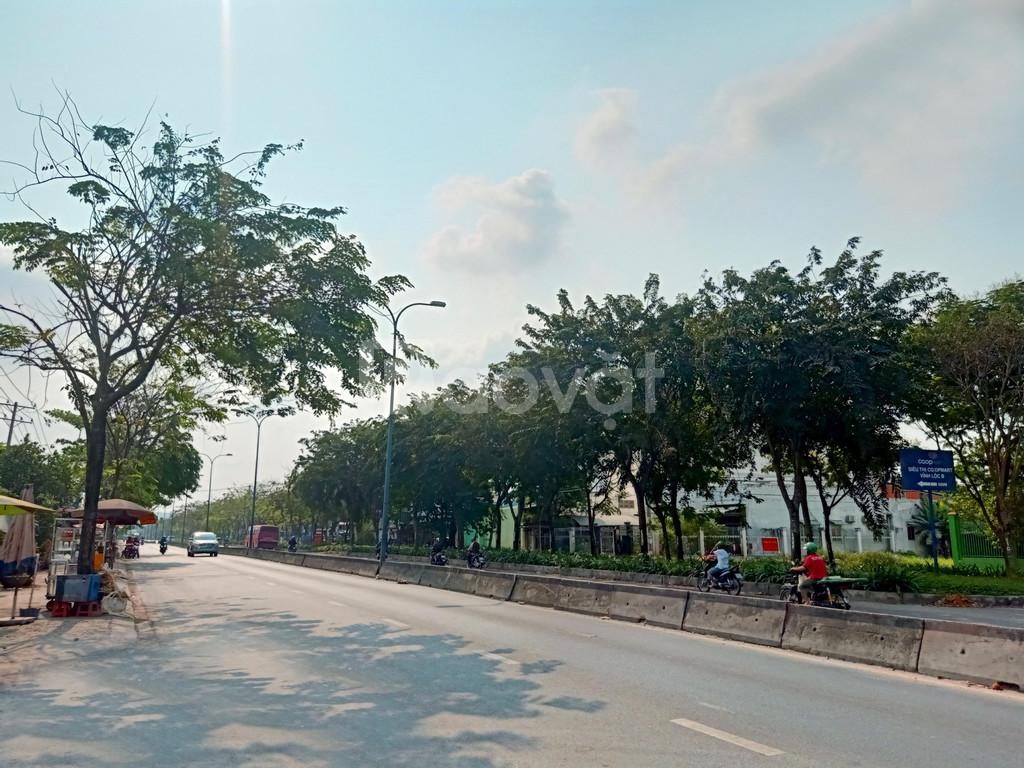 Bán đất MT đường 30m  Bình Chánh giáp Bình Tân  SHR 100%