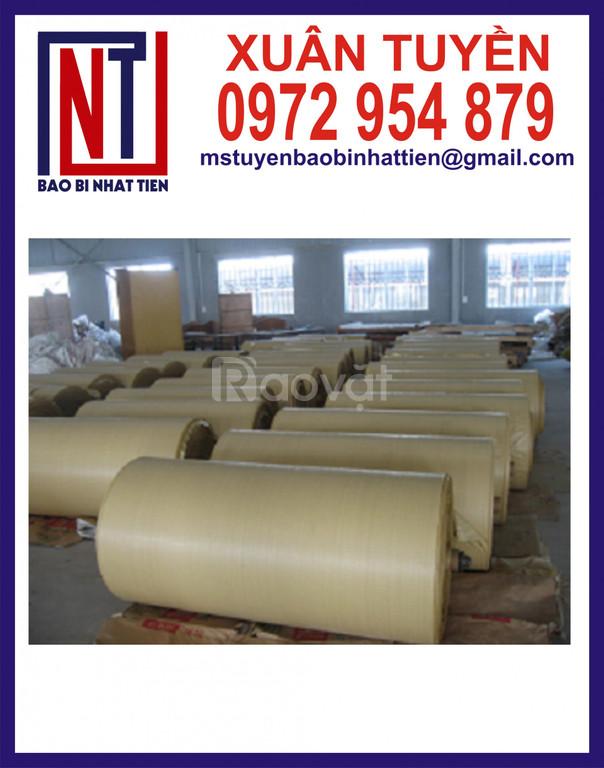Cung cấp vải PP dệt dạng cuộn giá rẻ