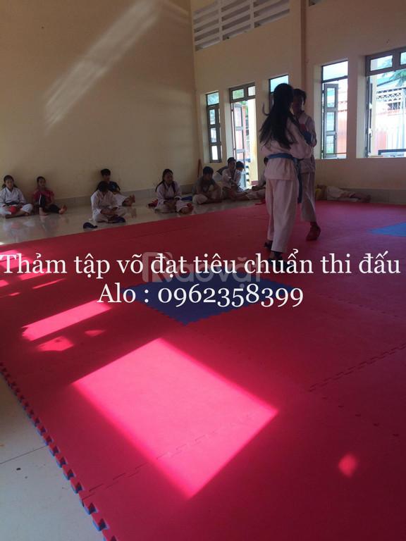 Thảm thi đấu karate  (ảnh 6)