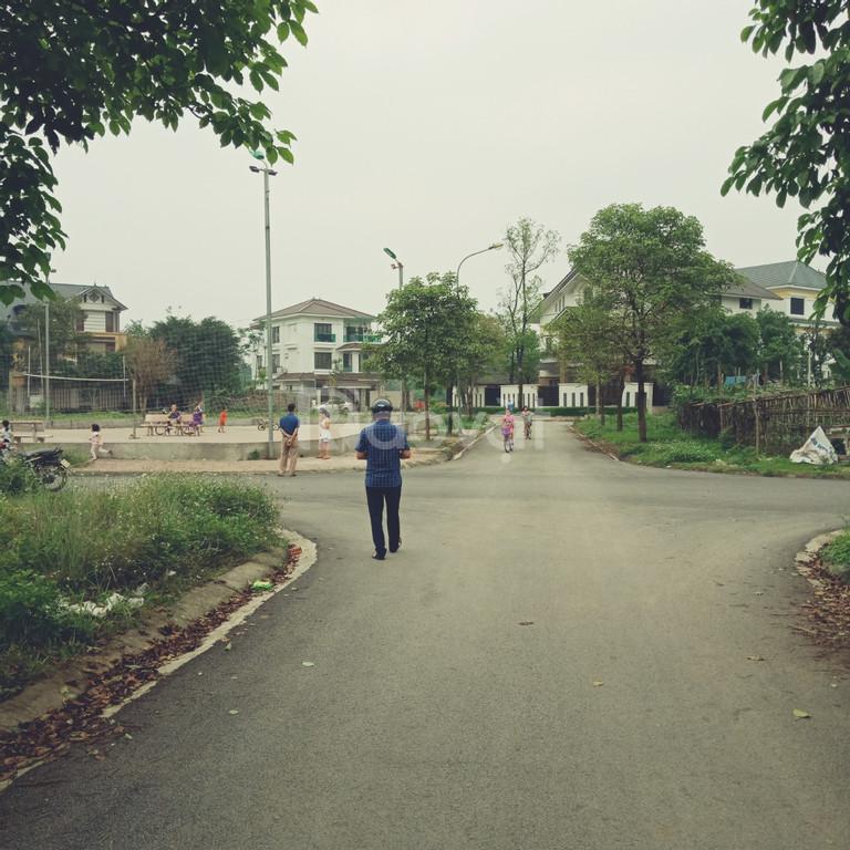 Bán đất khu đô thị Minh Phương - thành phố Việt Trì- Phú Thọ
