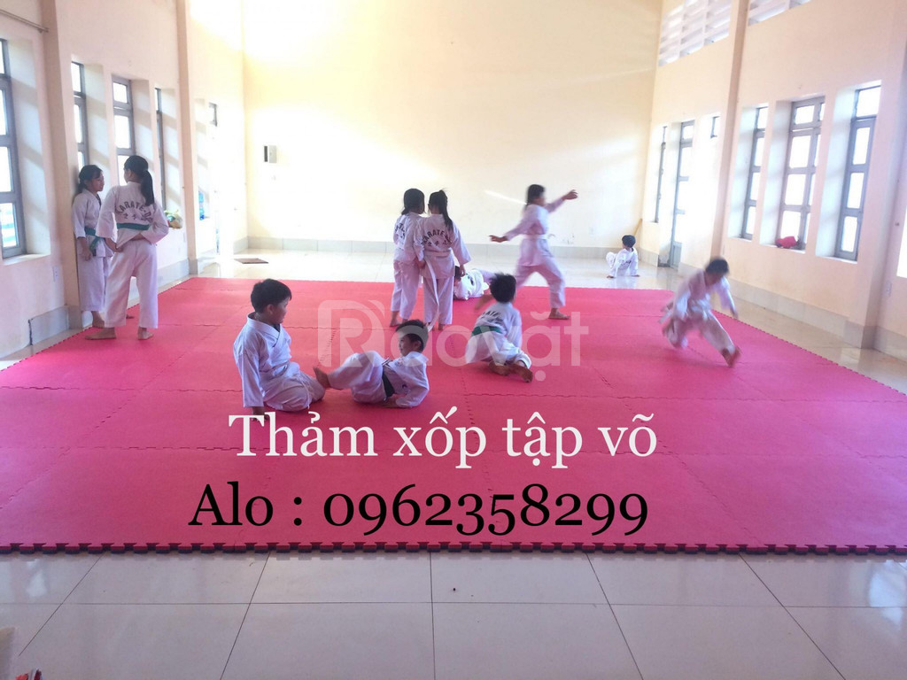 Thảm thi đấu karate  (ảnh 7)