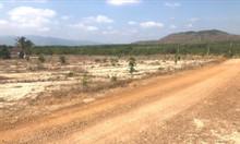 Đất vườn 3771m2 , sổ đỏ sẵn, cách dân cư 500m.
