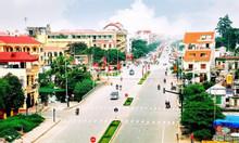 Cần bán lại lô góc đường Trần Văn Giàu Bình Tân sổ hồng riêng