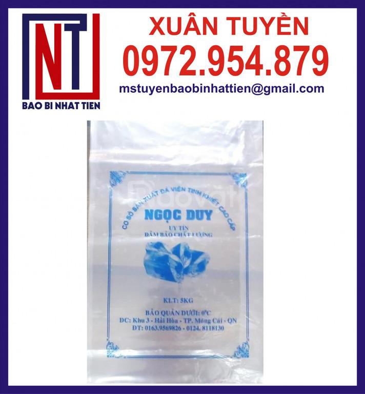 Sản xuất túi nilon đựng nước đá sạch