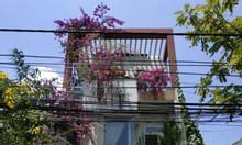 Cần tiền kinh doanh bán rẻ nhà 3 tầng Phạm Đình Hổ