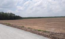 Đất ngay TTHC Chơn Thành giá 1000m2 549tr SHR thương lượng
