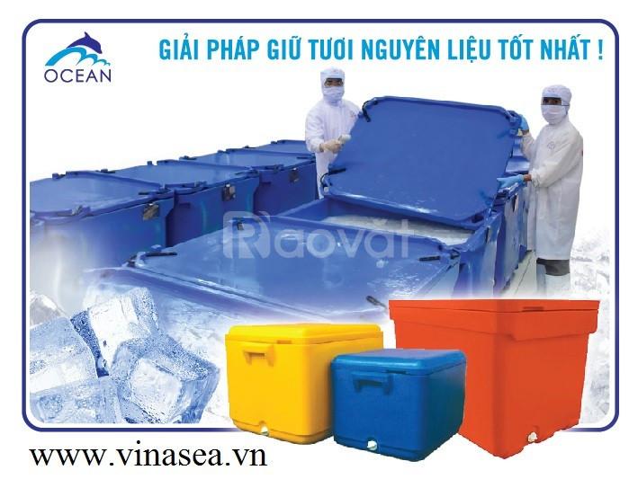 Thùng nhựa cách nhiệt bền Twinfish Malaysia (ảnh 6)