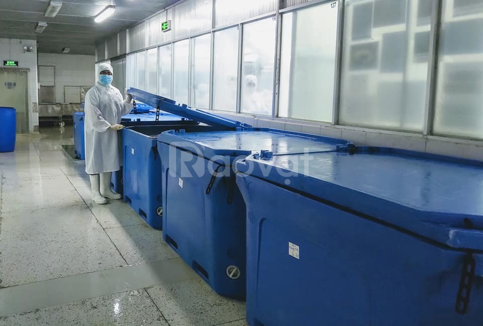 Thùng nhựa cách nhiệt bền Twinfish Malaysia (ảnh 5)