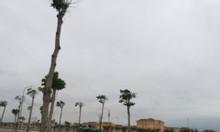 Đất nền view biển tại Quảng Bình đáng để đầu tư