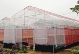 Lưới chống côn trùng nông nghiệp politiv