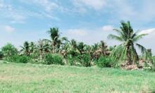 Bán đất nông nghiệp xã Phước Khánh 1000m2 giá 650 triệu.