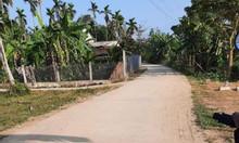 Bán nhanh lô đất Xã Nghĩa Trung,dt 125.4m2, giá 3xx tr.