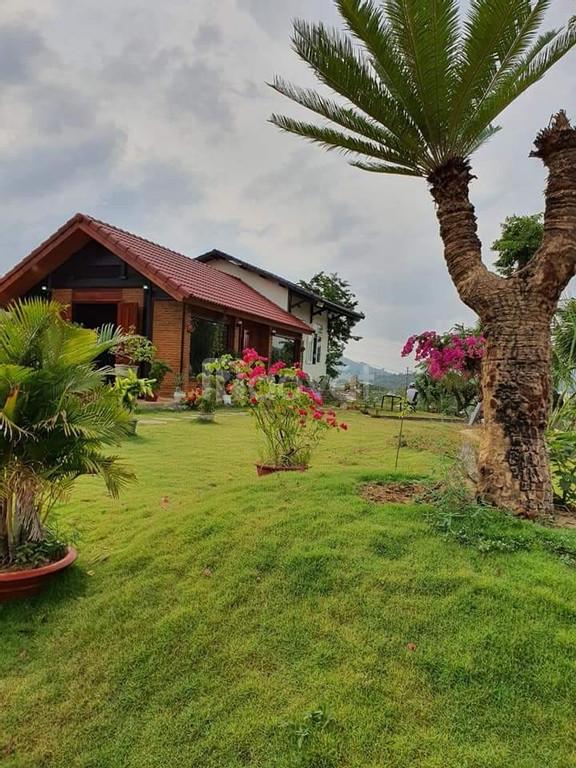 Gia đình cần bán gấp 2 lô đất khu đô thị mới Khánh Vĩnh ngay trung tâm