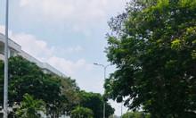 Bán đất Bình Tân 120m2 gần AEON MALL Bình tân, đã chuyển 100% thổ cư