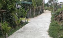 Bán nhanh lô đất Xã Tịnh Phong, dt 131,4m2, giá 3xxtr