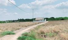 Bán đất vườn xã Phước Khánh giá rẻ đường ô tô tới đất, điện nước đầy đ