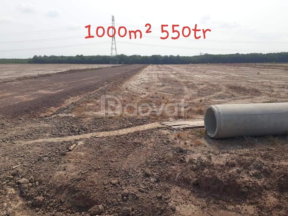 Lền kề Becamex đang rất hot, Dt 1000m² và 2mt