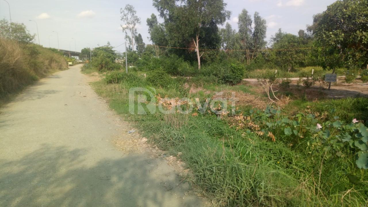 Đất mặt tiền tỉnh lộ 886B KCN Long Giang