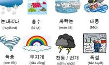 Học tiếng Hàn chỉ với 900k tại Quế võ