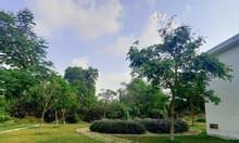 Đất mặt tiền đường đối diện công viên cây xanh