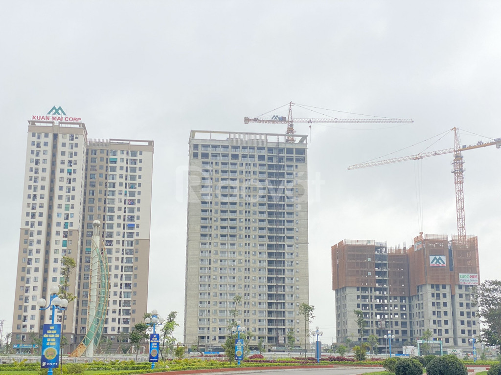 Xuân Mai Tower Thanh Hóa (ảnh 5)