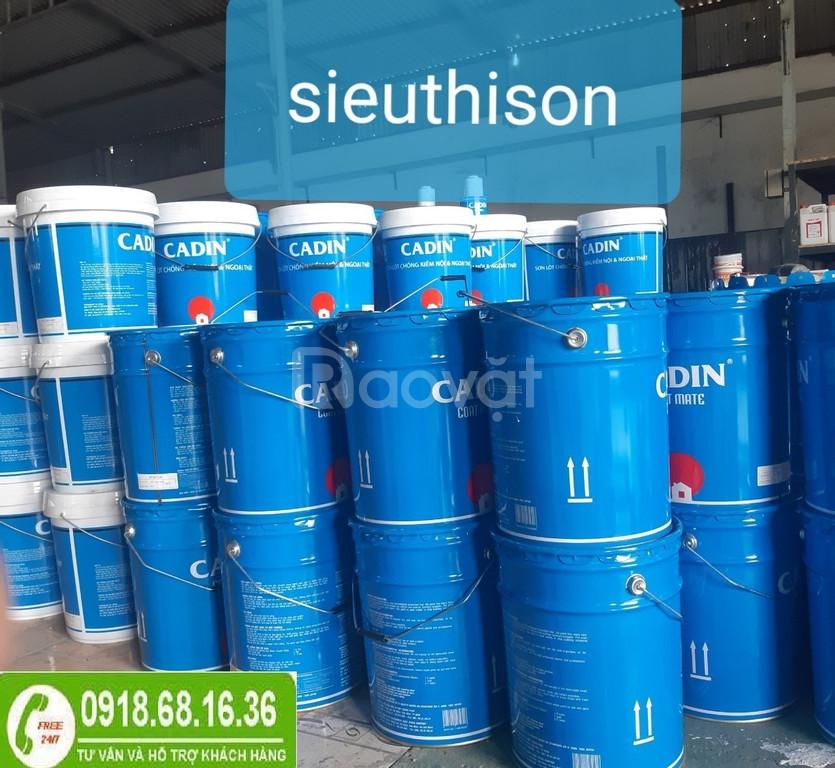 Chuyên bán sơn kẽm màu nhũ bạc cho sắt kẽm tại TPHCM