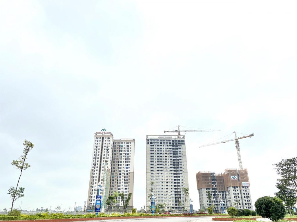 Xuân Mai Tower Thanh Hóa (ảnh 6)