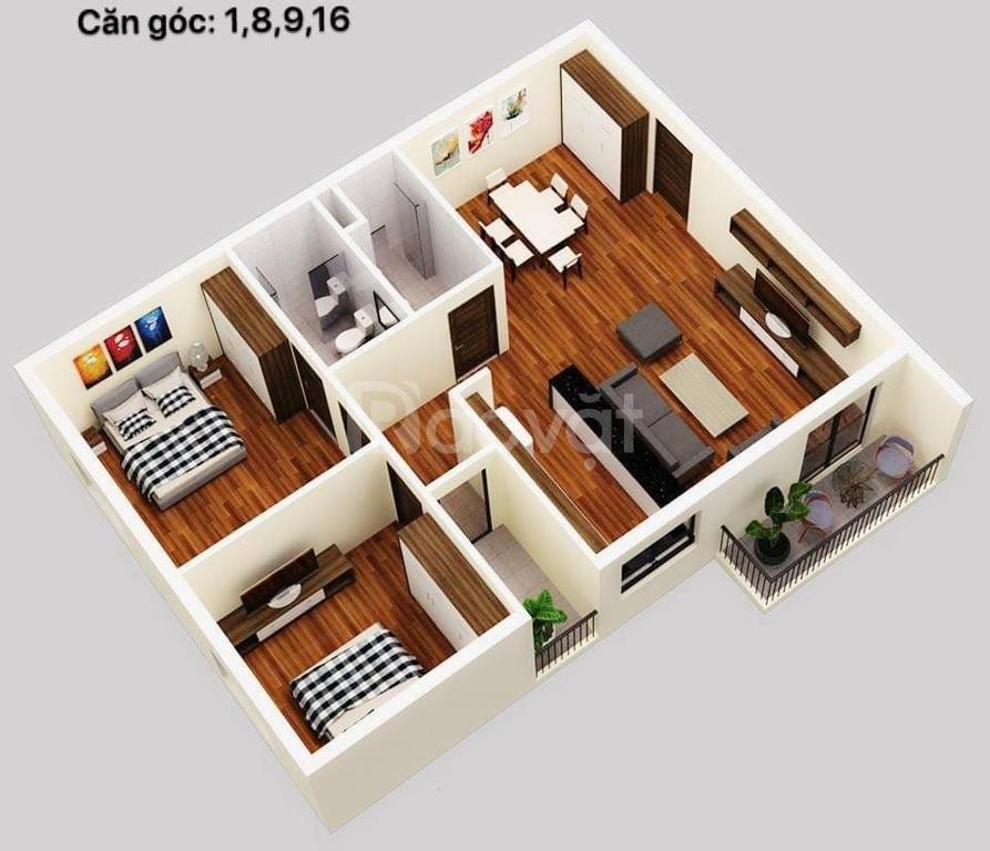 Mở bán đợt 1 chung cư Thành Công tp Thái Bình 700tr/căn