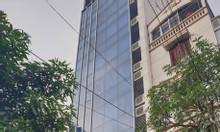 Bán tòa nhà An Trạch, Đống Đa 90m2, 11 tầng, thang máy, giá 31,5 tỷ