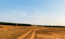 Bán đất 11,99m2 giá 719 triệu tại xã Hồng Thái, huyện Bắc Bình