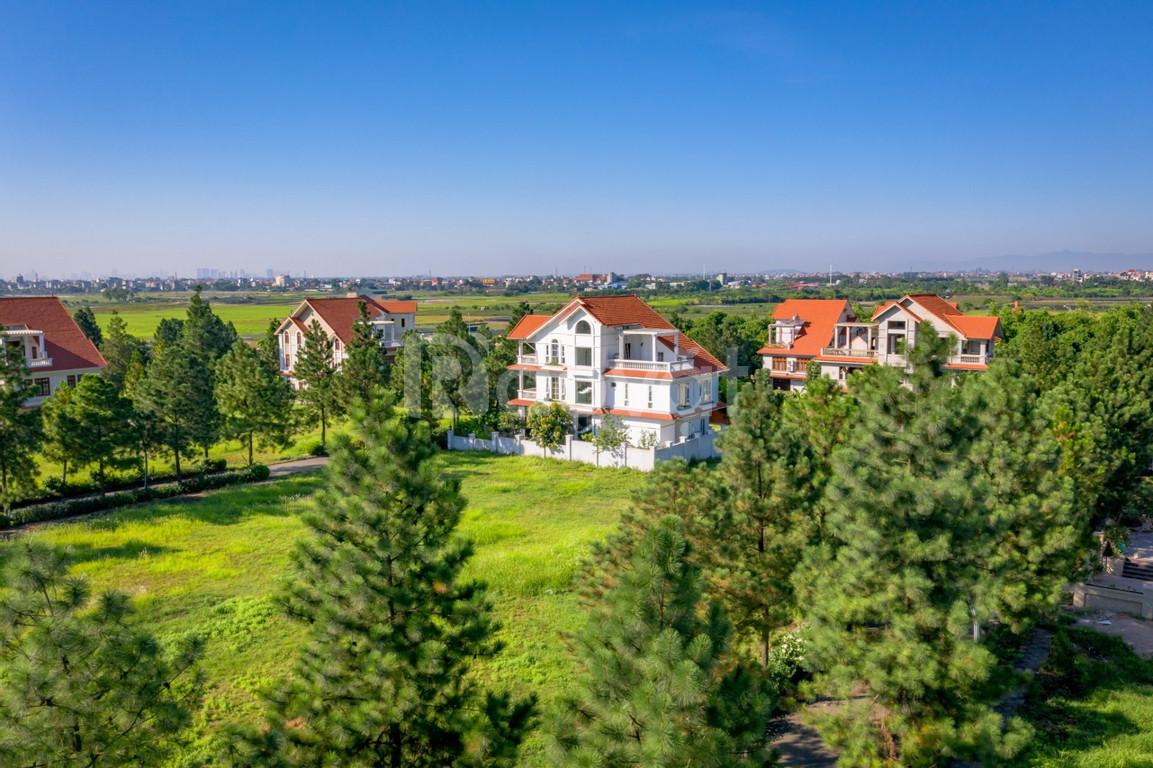 Chính chủ bán lại lô đất biệt thự 400m2 KĐT Sinh Thái Đan Phượng