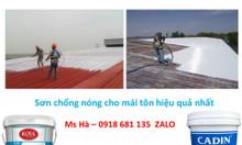 Chuyên cung cấp sơn chống nóng mái tôn hiệu quả