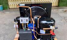 Chuyên cung cấp cụm máy nén Tecumseh 3hp cho kho lạnh