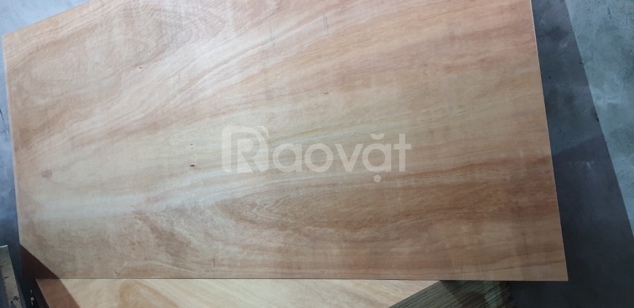Ván gỗ dán, ván gỗ dán mặt dầu, ván gỗ dán 2 mặt đỏ