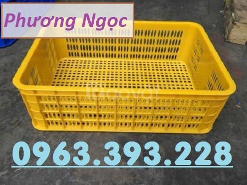 Sọt nhựa đựng nông sản, sóng nhựa rỗng HS009, sọt cao 19