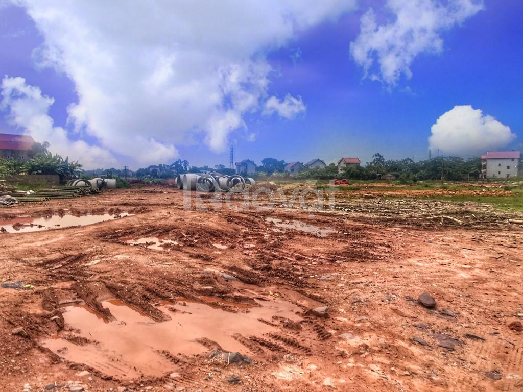 Đất công ty, nhà xưởng, đất SXKD, đất TMDV diện tích 1-100ha