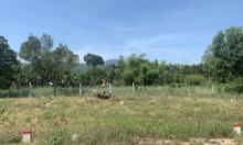 Bán nhanh lô đất Xã Nghĩa Thuận, Huyện Tư Nghĩa, dt 117,1m2,giá 3xxtr