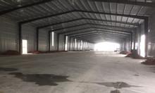 Công ty chúng tôi cho thuê 1000m2 kho TT Đông Anh Hà Nội