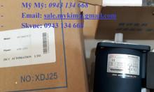 Motor JSCC 60ys06gv22x