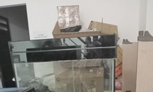 Tủ kính giá rẻ (cần thanh lý gấp )