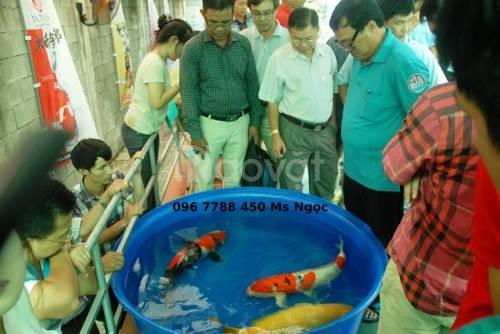Bồn tròn nuôi cá 500 lít giá rẻ Lhe 0967788450 Ngọc