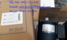 Motor JSCC 90YS60GY22