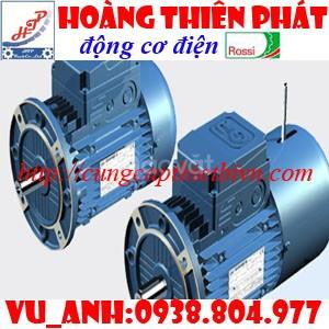 Động cơ điện Rossi
