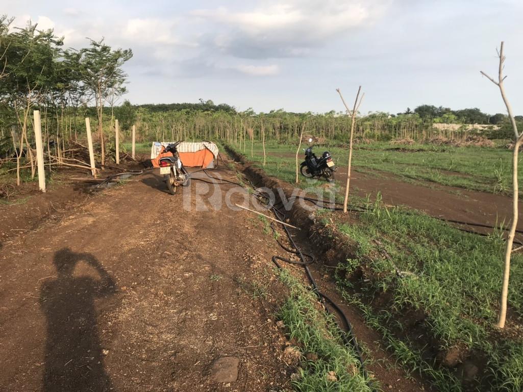 Đất vườn Trảng Bom 5157m2 gần quốc lộ 1a