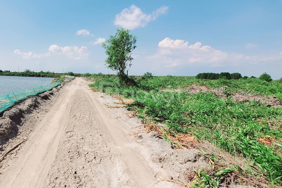 Bán đất vườn Nhơn Trạch giá 750k/m2 đường ôtô 7 chỗ