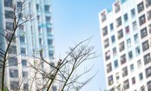 Bán căn hộ chung cư 30m2 giá 860tr tại Ecopark