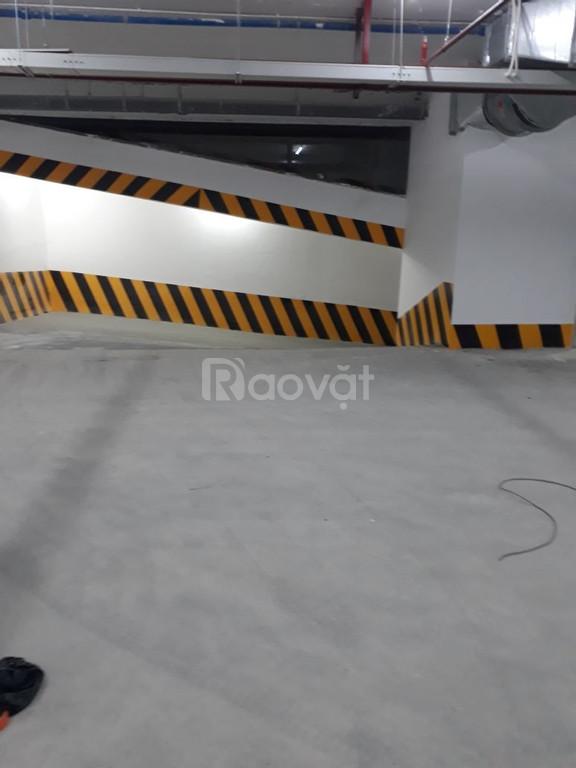Cung cấp sơn kẻ vạch Cadin cho đường cao tốc tầng hầm màu vàng giá rẻ (ảnh 4)