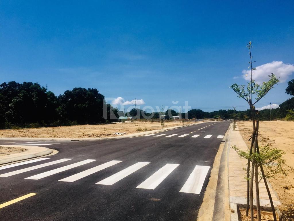 Đất nền mặt tiền đường Đinh Tiên Hoàng