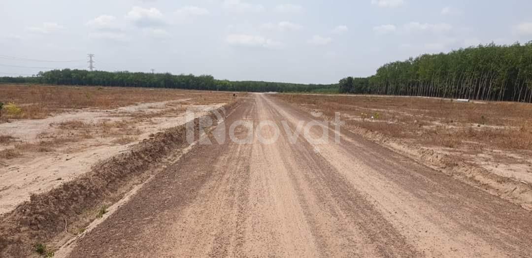 Cần thanh lý một vài lô đất liền kề KCN Becamex