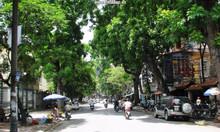 Mặt phố Ngô Thì Nhậm, Hai Bà Trưng, 208m2, mặt tiền 7m, giá 85 tỷ